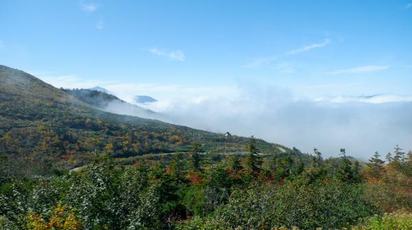 Route Alpine Tateyama Kurobe pour les bus entre Bijodaira et Murodo