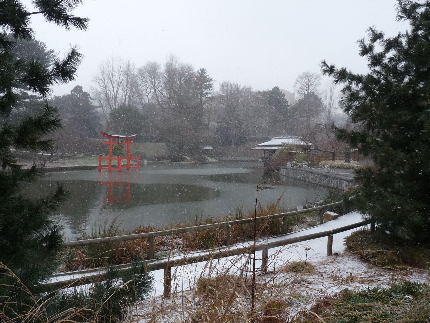 brooklyn botanic garden un jardin japonais new york. Black Bedroom Furniture Sets. Home Design Ideas