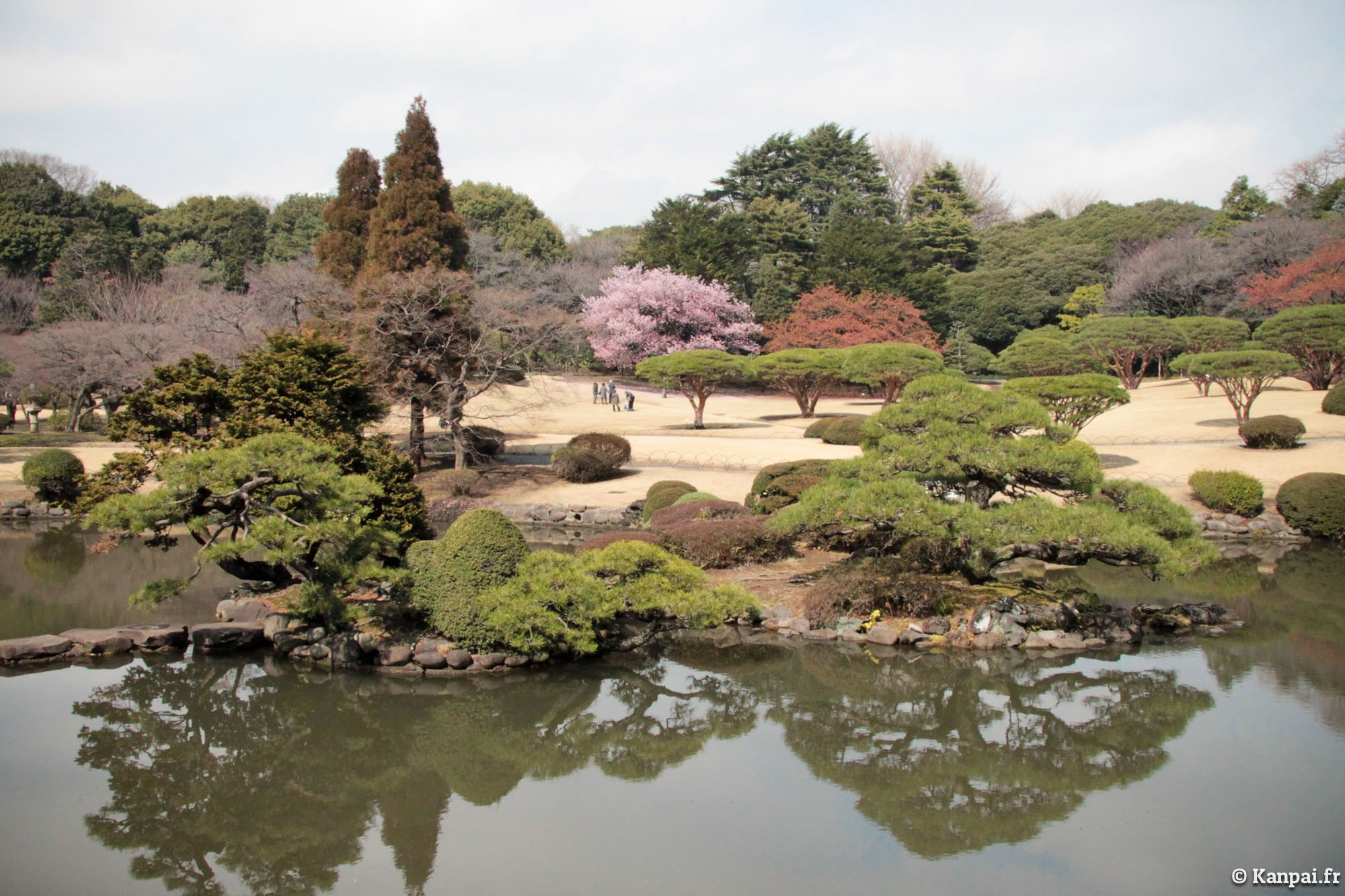 Shinjuku gyoen le jardin imp rial national de tokyo for Jardin imperial