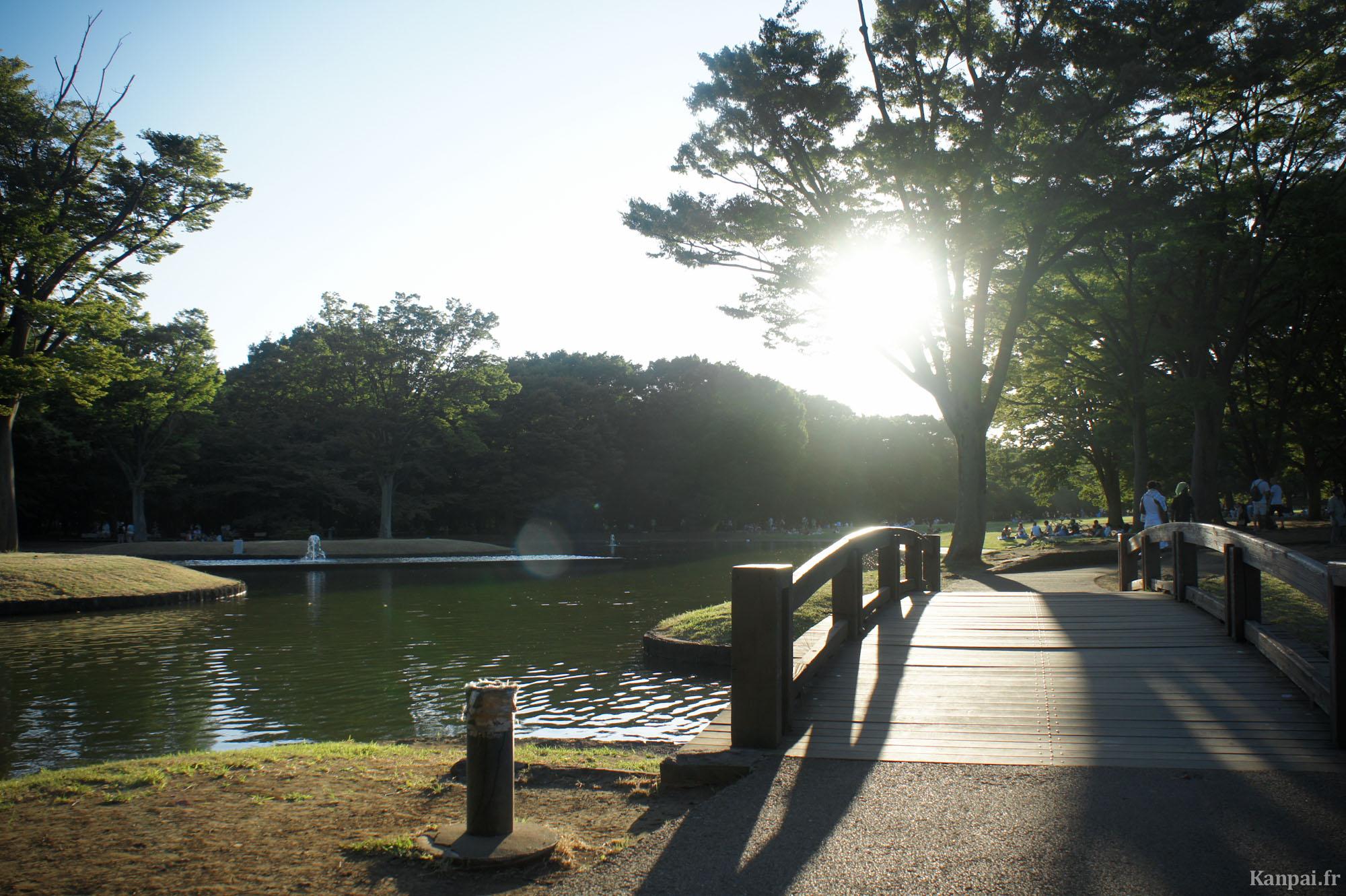 Image result for le parc de YOYOGI