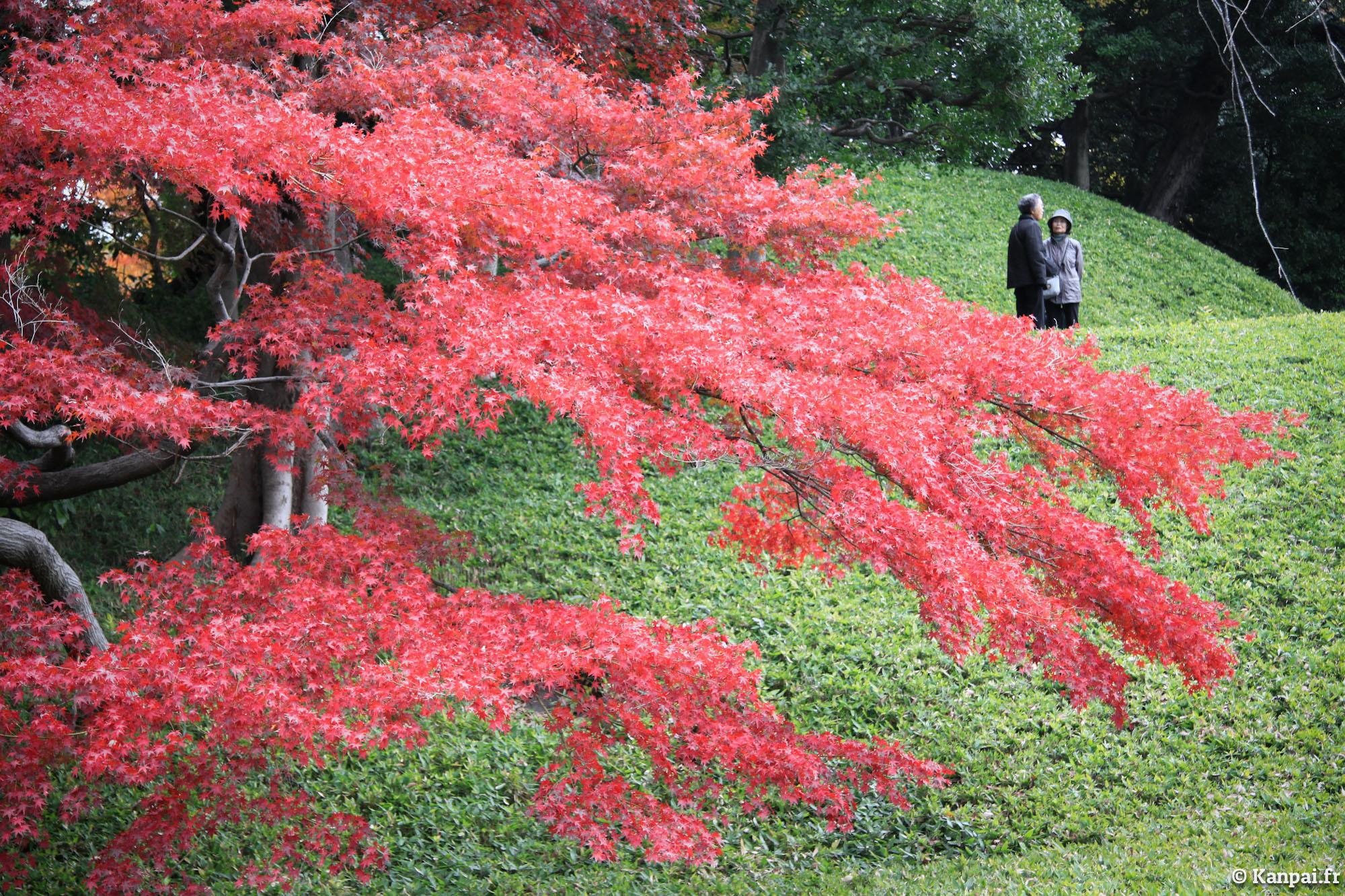 Koishikawa korakuen le jardin japonais de tokyo dome for Portique de jardin japonais