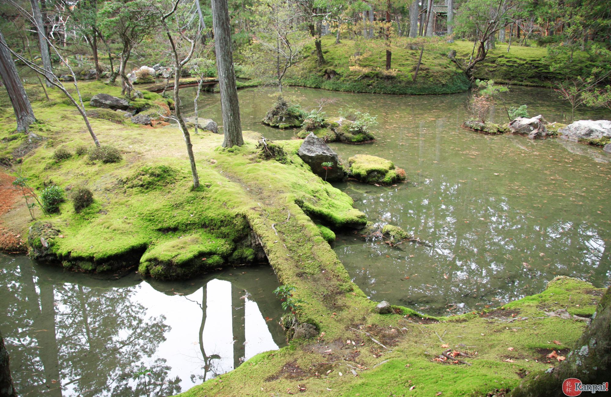 mousse jardin japonais racines jardinage plantes jardin de mousse art des jardins ides de. Black Bedroom Furniture Sets. Home Design Ideas