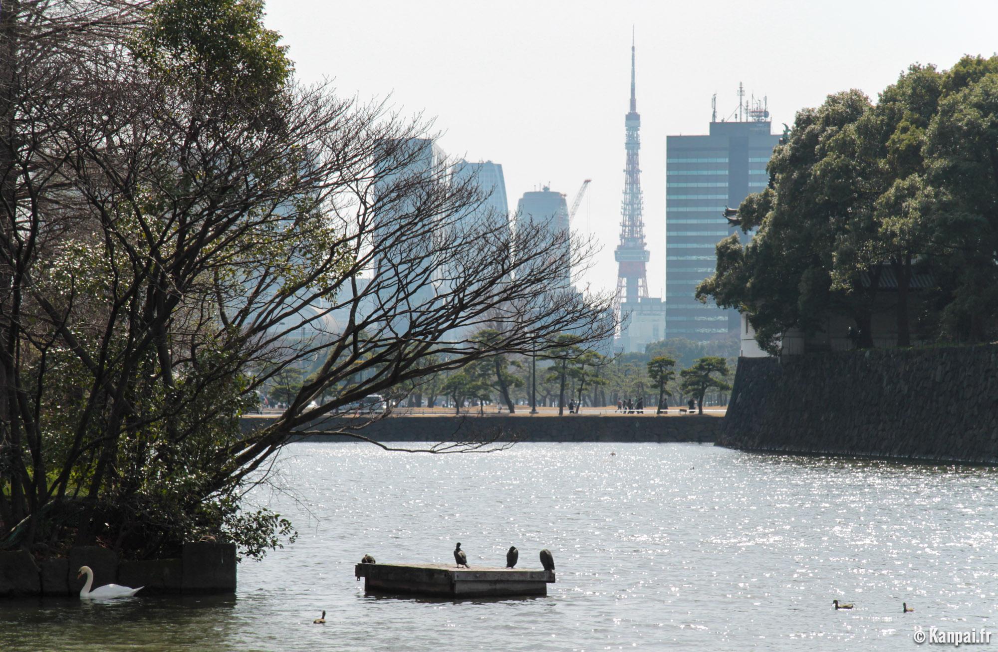 Japon  Kkyo  Palais Imprial De Tokyo Fukiage